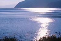 琵琶湖湖岸